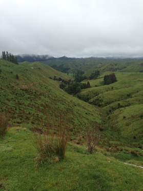 113 Tongariro National Park