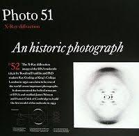 Photo 51